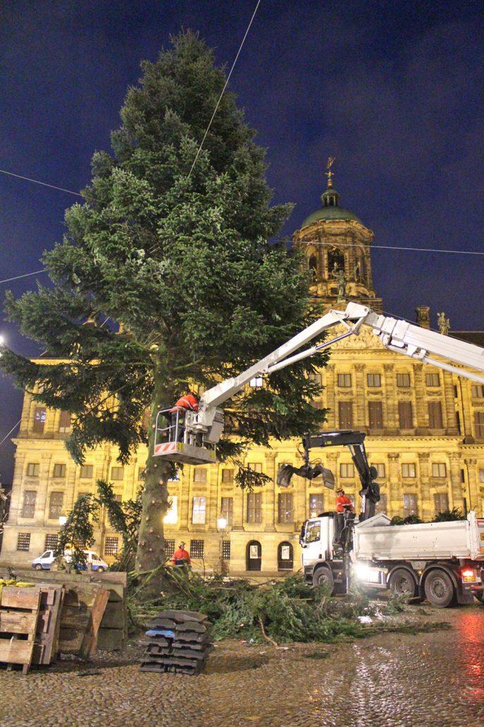 GROEN-Direkt KerstbomenXL-Afbreken2-687x1030