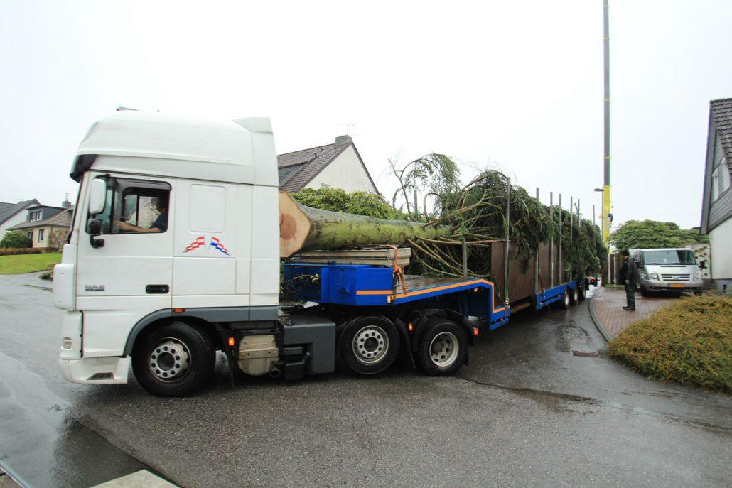 GROEN-Direkt KerstbomenXL-Transport4-1030x687
