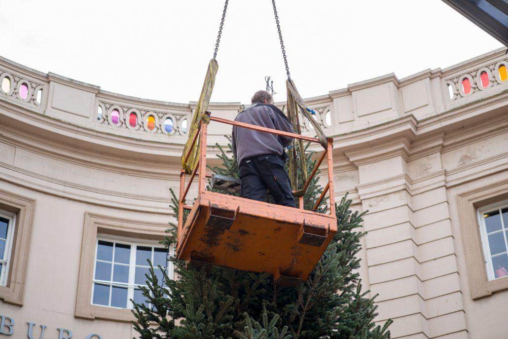 GROEN-Direkt KerstbomenXL-Versieren1-1030x687