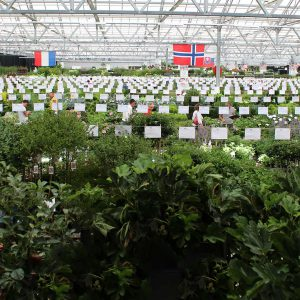 Groen-Direkt Boskoop Tuinplanten beurs achtergrond